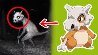 5 Pokémons Captados en Cámara en la Vida Real