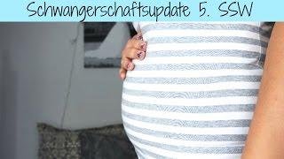 Schwangerschafts-Update: 5.SSW | Babyartikel.de