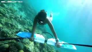 Subwing Asia Flying Underwater