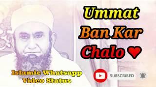 Ummat Ban Kar Chalo ❤️ Maulana Tariq Jameel Bayan Whatsapp Status Video ❤️
