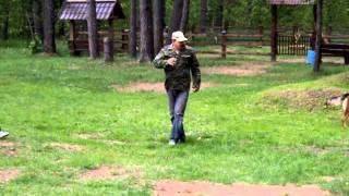 Кёниг 25 мая 2011 г.ПСКОВ питомник караульных собак ВДВ.