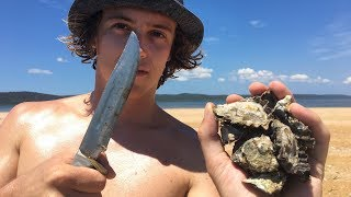 Collecting & Eating Fresh Oysters (Cast Netting & Spearfishing)