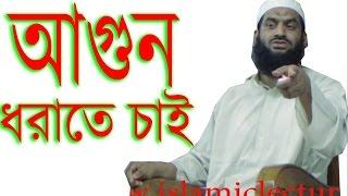 আগুন ধরাতে চাই ! Allama Mamunul Haque