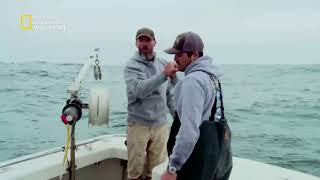 سمكة التونة العنيدة (الشمال vs. الجنوب) - الأيام الأخيرة