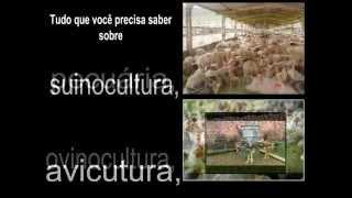 Tudo sobre agricultura e outras atividades rurais.