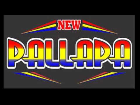 New Pallapa Istri Saleha Lirik