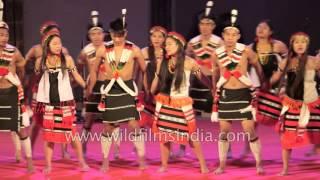 Liangmai Naga dance from Manipur