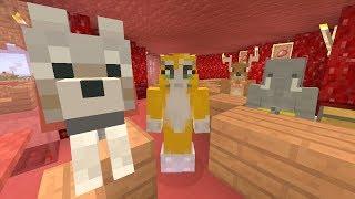 Minecraft Xbox - Secret Entrance [562]