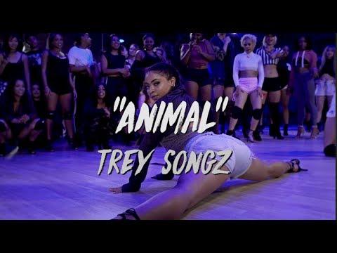 Xxx Mp4 Trey Songz Animal Nicole Kirkland Choreography 3gp Sex