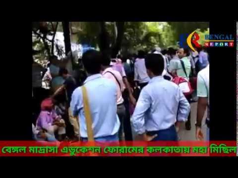 Xxx Mp4 বেঙ্গল মাদ্রাসা এডুকেশন ফোরামের কলকাতায় মহা মিছিল 3gp Sex