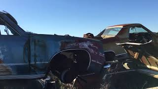 Another awesome muscle car Found...SS chevelle sitting quietly in this wrecking yard