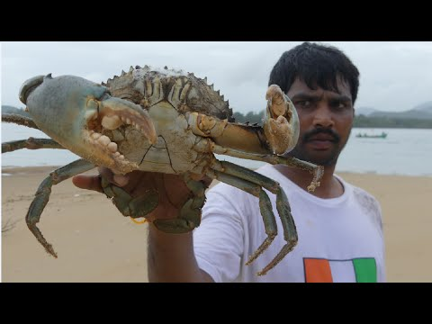 Xxx Mp4 BIG CRAB CAUGHT AND COOKING IN GOA BACKWATER CRAB CURRY MAKING SEAFOOD RECIPES Street Food 3gp Sex