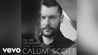 Calum Scott - You Are The Reason (John Gibbons Remix/Audio)