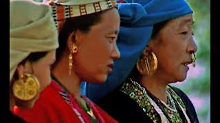 Limboo Dhaan Naach  ||  Rice Harvesting Dance from Sikkim