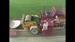 Big roll sod harvest