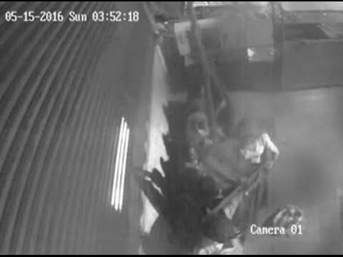 Xxx Mp4 दिल्ली में चोरनी गैंग का आतंक CCTV में कैद हुई घटना 3gp Sex