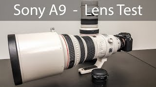 Sony A9 Lens Test Canon 400mm & 300mm F2.8 IS