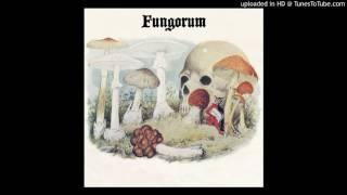 Fungorum - The Amber Eye
