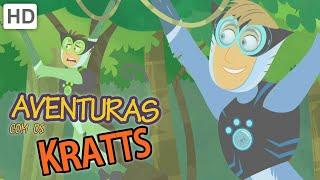 Aventuras com os Kratts (HD Português) - Sombra, A Onça-preta