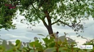 Chue dile mon- full video song