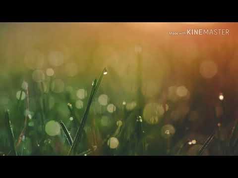 Xxx Mp4 A New Bodo Song Swgab Marbai Rimal 2018 3gp Sex