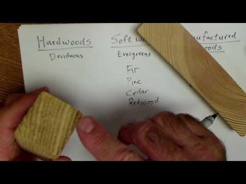 Wood Identification