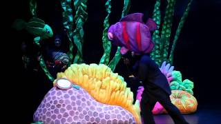 The Rainbow Fish 2011 - An Ocean Tale