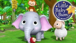 Animals Feeding Song | Nursery Rhymes | Original Kids Songs By LittleBabyBum!