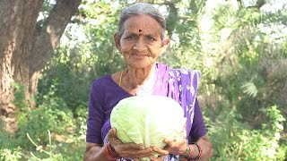 How To Cook Cabbage Recipes Village Style By My Grandma || Myna Street Food