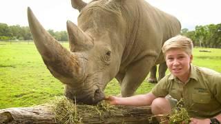 Robert Irwin's virtual Australia Zoo tour!