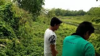 Sukher agun song teaser