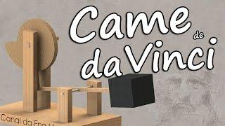 Came de Leonardo Da Vinci