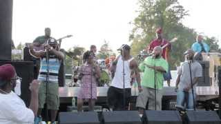 PrimeTime Band @ Geno's Park 9 7 13 feat. Wink from Junk