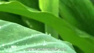Da Ghusal Ahkam by Sheikh Ameen Ullah (Pashto Bayan)