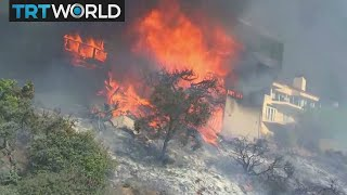 California Wildfires: Bel Air mansions under threat as wind picks up