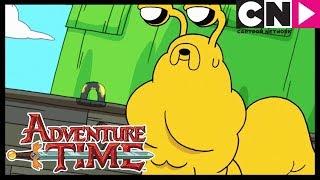 Amor Lento   Hora de Aventura Brasil   Cartoon Network