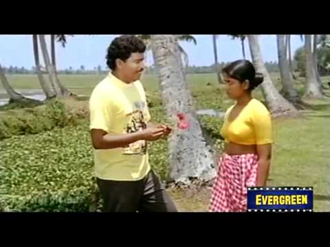 Chemparunthin   Mukhachitram 1991