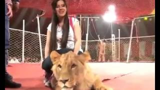 Rabi Pirzada Doing With Lion