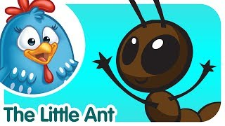 Little Ant - Lottie Dottie Chicken - Kids songs and nursery rhymes in english