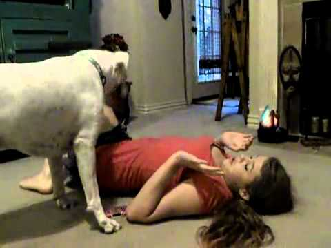 Dog attacks girl