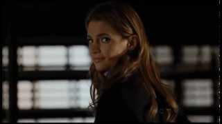 Castle&Beckett-Ledge of Love