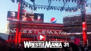 Undertaker Entrance at WWE WrestleMania 28,29,30,31,32 - My View