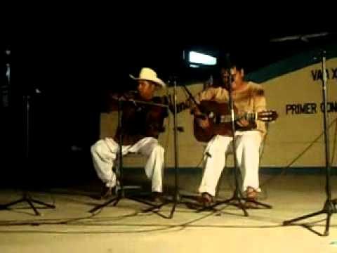 Froylan Barrios Fandango Jicayanero viko ñuu chikua a .avi