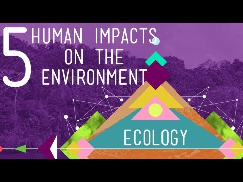 watch 5 Human Impacts on the Environment: Crash Course Ecology #10