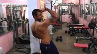 Bengal tiger in royal gym