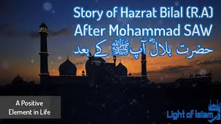 Story of Hazrat Bilal (R.A) After mohammad S.A.W Maulana Tariq Jameel | Very Emotional
