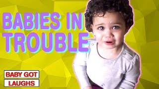 Babies in Trouble! | Troublemaker Baby and Toddlers Compilation