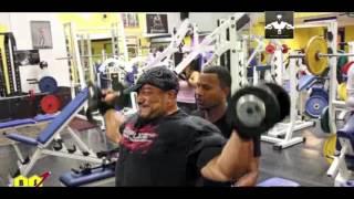 Roelly Winklaar Shoulders Compilation - World Bodybuilder Workout
