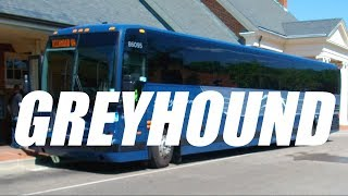 How is Bus Travel in the United States? Going GREYHOUND!