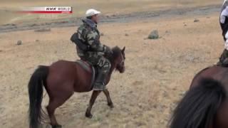 Wildlife 2014 Secret Hunter of the Mountains Mongolias Snow Leopard Documentary